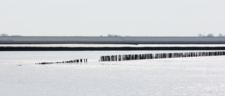 Shoreline of the Waddensea - North of the Netherlands