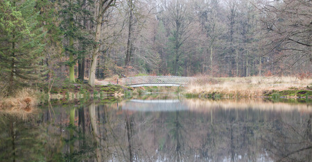 Bridge over a lake in the forest - The Netherlands Stock Photo