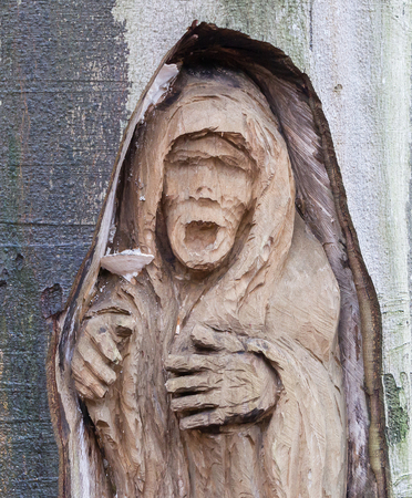 Spooky old carving in a tree - The Netherlands Stock Photo