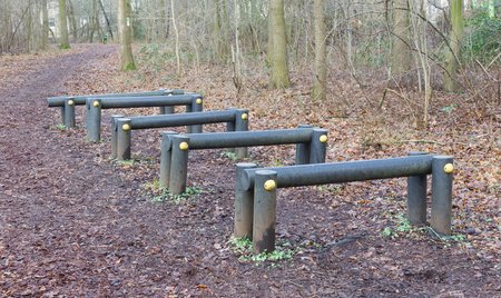 Fitness equipment in a forest - One stage of many - Netherlands Banque d'images