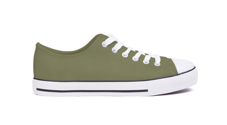 New sneaker shoe, isolated on a white background - Brown