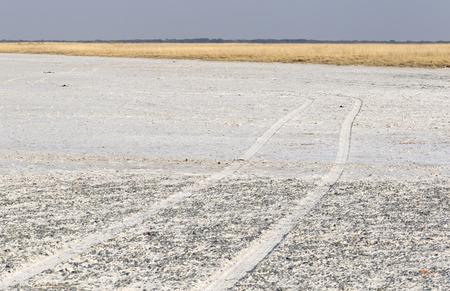 Makgadikgadi Pans National Park expansive landscape, Botswana Stock Photo