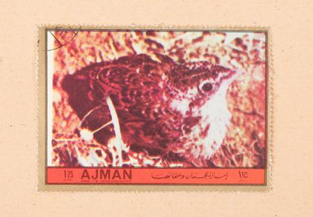 UNITED ARAB EMIRATES - CIRCA 1972: A stamp printed in the United Arab Emirates shows a bird, circa 1972