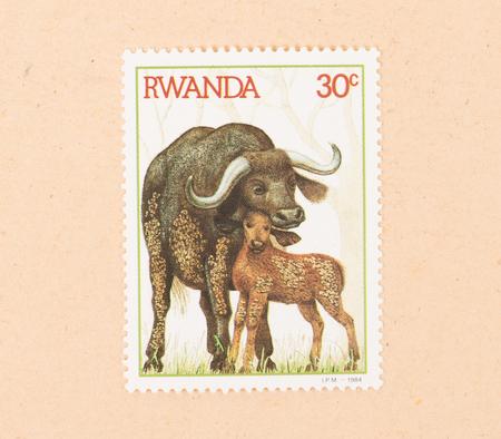 RWANDA - CIRCA 1984: A stamp printed in Rwanda shows a waterbuffalo with a young, circa 1984