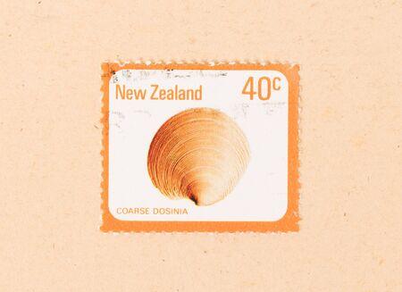 NEW ZEALAND - CIRCA 1980: A stamp printed in New Zealand shows a Coarse Dosinia, circa 1980