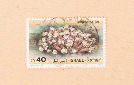 ISRAEL - CIRCA 1980: A stamp printed in Israel shows a plant, circa 1980