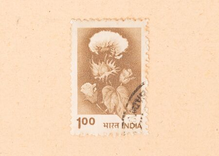 INDIA - CIRCA 1970: A stamp printed in India shows a flower, circa 1970