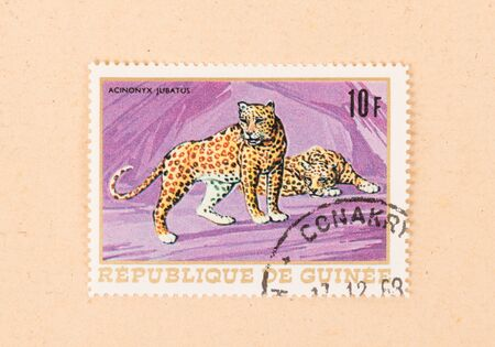PAPUA NEW GUINEA - CIRCA 1980: A stamp printed in Papua New Guinea shows a cheetah, circa 1980 Stock Photo - 127114322