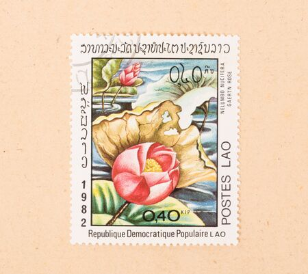 LAOS - CIRCA 1980: A stamp printed in Laos shows a flower, circa 1980