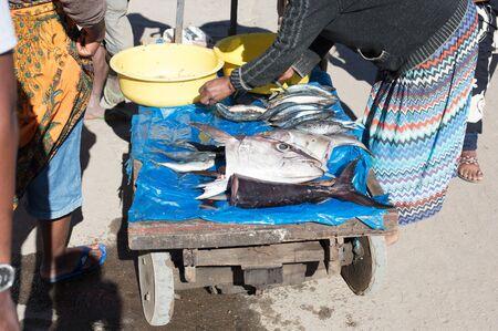 Fishes on display at street market, Madagascar