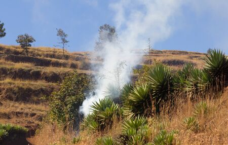 Smoking out rodents, protecting the local crops, Madagascar Standard-Bild - 129987011