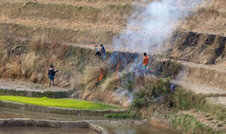 Burning dry grass in spring, making room for agriculture, Madagascar