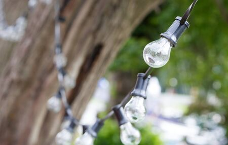 Party string lights hanging, waiting for the night