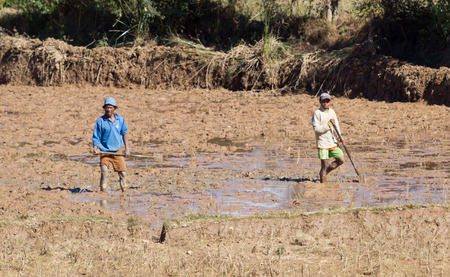 Antsirabe, Madagascar on july 27, 2019 - Men working on a field in Madagascar on july 27, 2019.