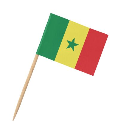 Small paper flag of Senegal on wooden stick, isolated on white