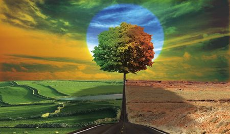 strange landscape with big tree in center Stock Photo - 6507945