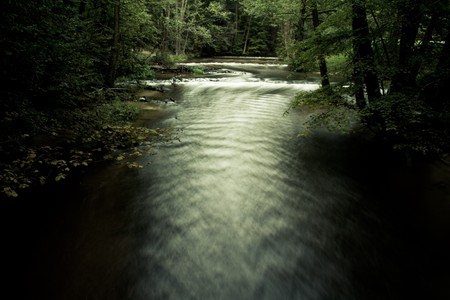 river between some trees in dark and scary forest photo