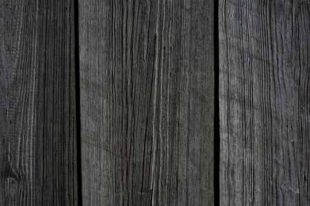 graining: detailed macro photo of old wood texture Stock Photo