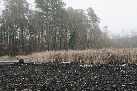 landscape with bottom of a dried lake during winter season on foggy day