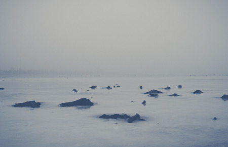 landscape with roots of cutted tree protruding from ice cover on a shallow lake on winter season
