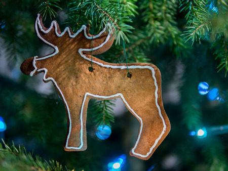 gingerbread reindeer christmas decoration hanging on a tree