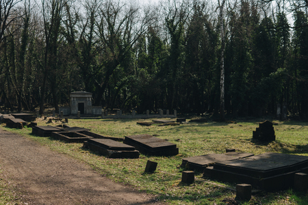 landscape of old jewish cemetery with destroyed tombstones in city of Czestochowa in Poland Stock Photo