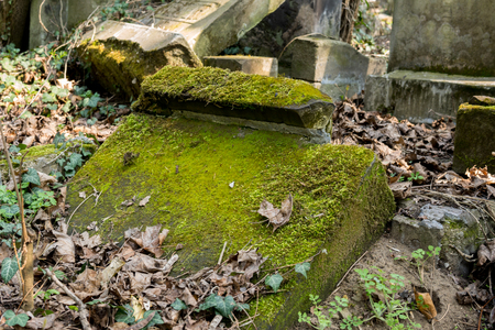 old jewish tombstones covered with moss on graveyard in the city of Czestochowa in Poland