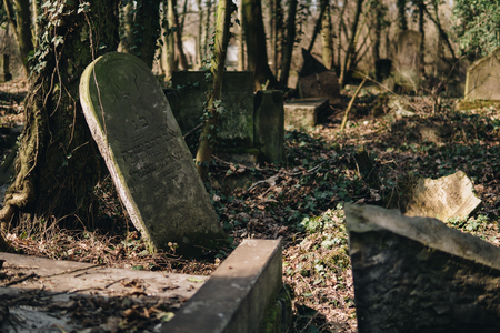 landscape of old jewish cemetery with destroyed tombstones in city of Czestochowa in Poland