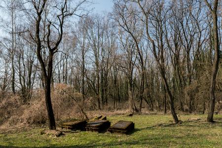 empty space on old jewish cemetery in the city of Czestochowa in Poland Reklamní fotografie