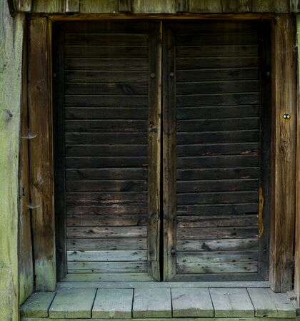 detail of old wooden doors covered with cobweb