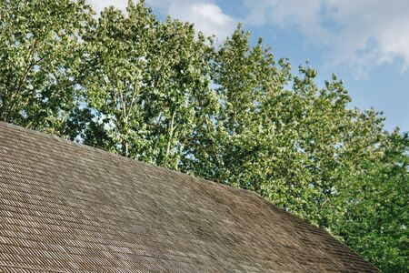 detail of a roof made from wood shingle next to trees over blue sky 스톡 콘텐츠