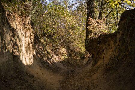 bottom of a most famous gully landform in Kazimierz Dolny called Korzeniowy dol