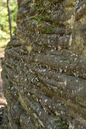 detail of large sandstone rocks in nature Reserve Rocks in Krynki in ÅšwiÄ™tokrzyskie Voivodeship in Poland