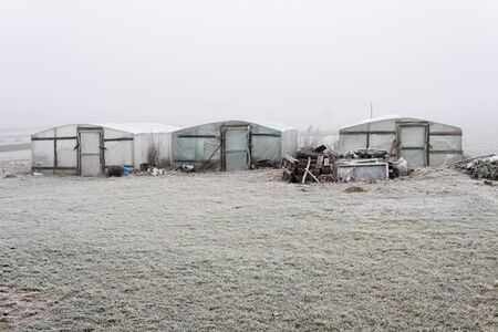 three greenhouses made from wood and foil standing alone in winter during foggy day