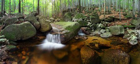 Herbstwaldnatur. Lebhafter Morgen im bunten Wald mit Nebel in den Ästen der Bäume. Landschaft der Natur mit Sonnenlicht.   Märchenwald Gebirgsfluss im Spätherbst. Indian Summer angewendet.