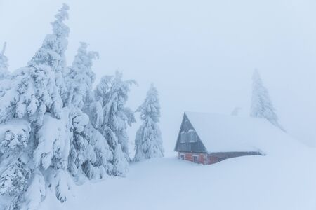 Alps in extreme cold and frosty winter conditions. Extreme cold and deep snow. Foggy winter weather. Old frost covered country house surrounded by snowy trees. Reklamní fotografie