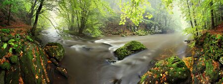 View into autumn mountain river with blurred waves, fresh green mossy stones and boulders on river bank covered with colorful leaves from maples and other trees. Jizera river, Czech Republic