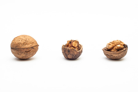 Photo of walnuts against white background with soft shadow Stock Photo