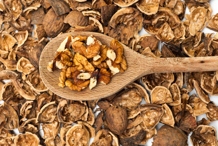 nutshell: Walnuts on the wooden spoon against nutshell background