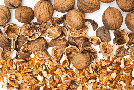 nutshell: Photo of walnuts and nutshell with copyspace
