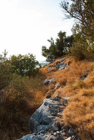 murter: Photo of Stone path in Murter, Dalmatia, Croatia