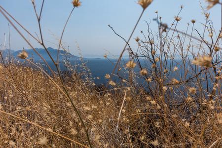 Photo of beautiful Dalmatian coast, Trstenik, Dalmatia, Croatia, Peljesac peninsula