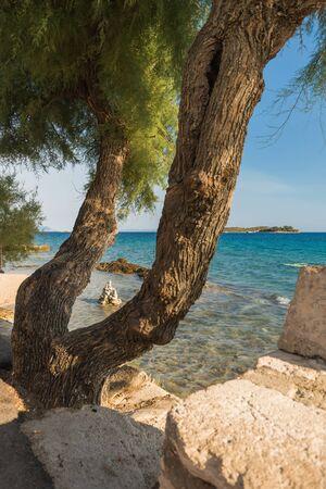 Photo of Beautiful summer seascape in Orebic, Peljesac peninsula, Dalmatia, Croatia Zdjęcie Seryjne