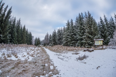 Frozen Trees, Fresh Snow In Beskydy Mountains, crossroads under Travny Mountain, Czech Republic