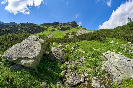 West High Tatras Mountains, Slovakia in Summer with blue sky and clouds