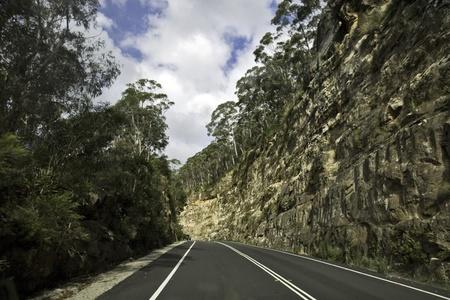 bush road au photo