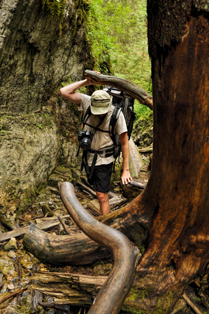 Backpacker moving through tree roots and fallen timber in Slovak Paradise National Park photo