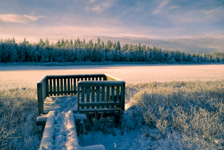Breathtaking view of a winter forest and a wooden viewpoint photo