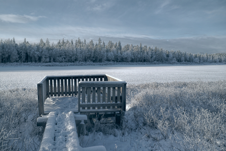 Gloomy view of a frozen forest and a wooden viewpoint photo