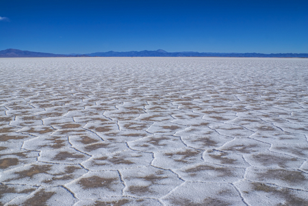 salina: Unusual texture on the surface of salt planes Salina Grandes in Argentina